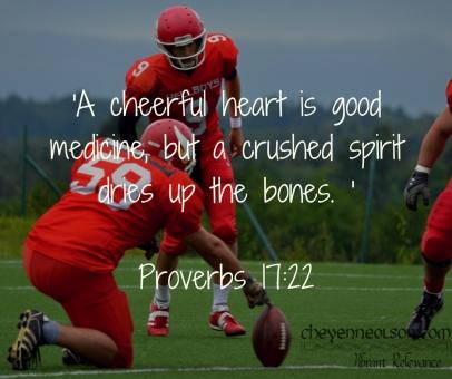 Proverbs 17.11